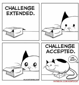 challenge-extended-challenge-accepted-um-why-patreon-com-howtocat-new-comic-34224528